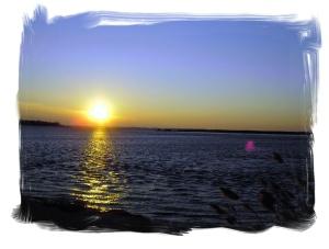 Chesapeake Bay, farming, East Neck Island